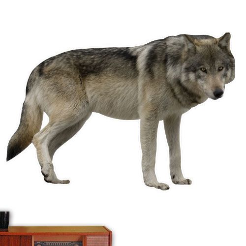View Product Wolf Wall Decal