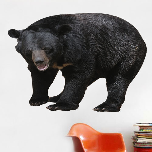 View Product Black Bear Wall Decal