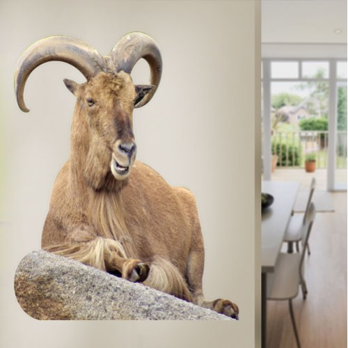 View Product Eastern Tur Goat Wall Decal