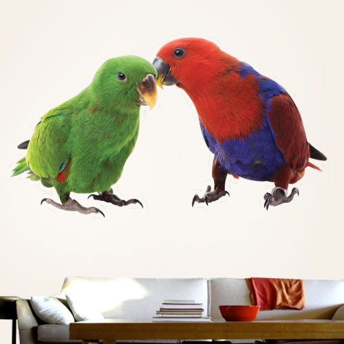 Red and Blue Sided Eclectus Parrots Wall Decal