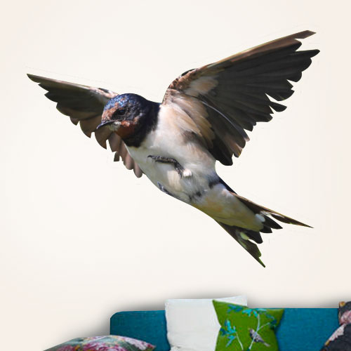 Barn Swallow Wall Decal