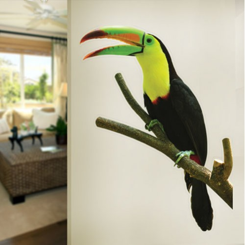 Keelbilled Toucan Wall Decal