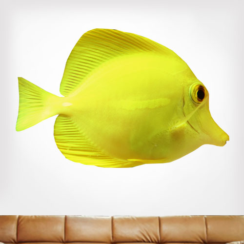 View Product Yellow Tang Wall Decal