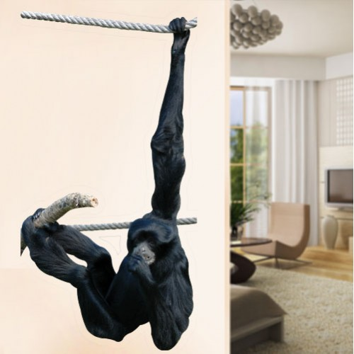 View Product Gibbon Swinging Wall Decal
