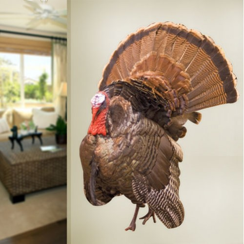 Turkey Wall Decal