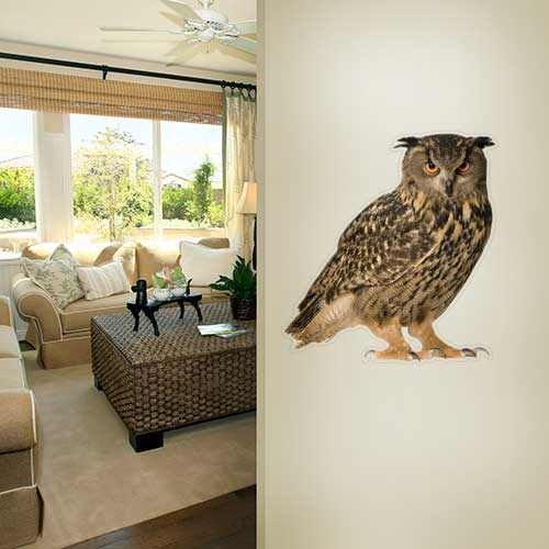 Eurasian Eagle Owl Wall Decal