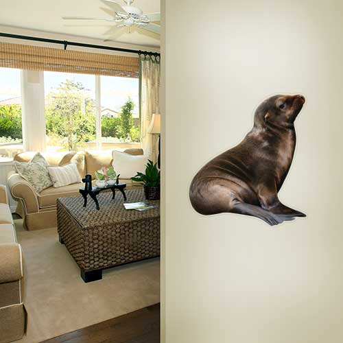 View Product Baby Seal 2 Wall Decal