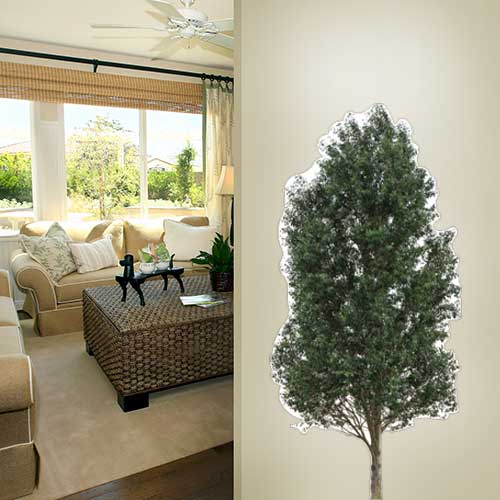 Realistic Tree Wall Decal