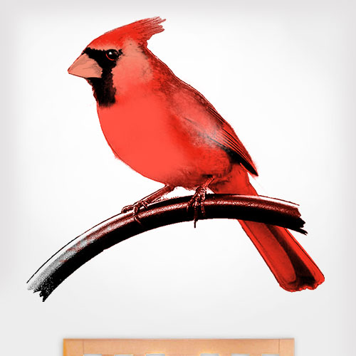 Painted Cardinal Wall Decal